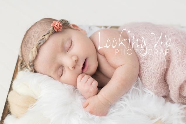 BABY SISTER MAKES FOUR {FAIRFIELD COUNTY NEWBORN PHOTOGRAPHY}