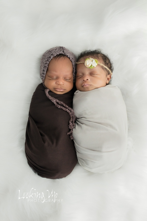 Double the Blessings (Darien Infant Photography)