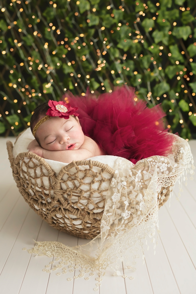 Baby girl posed with red tutu and red flower headband in gorgeous basket in front of twinkle lights for holiday themed newborn portrait session