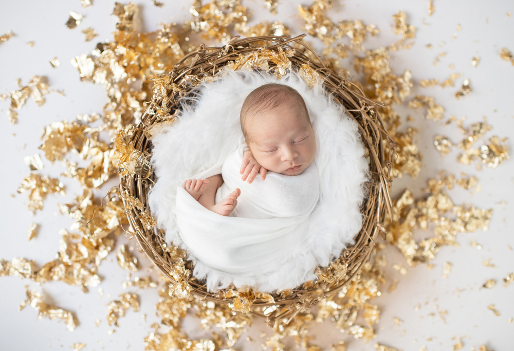 Hudson the Lion | Connecticut Newborn Photography