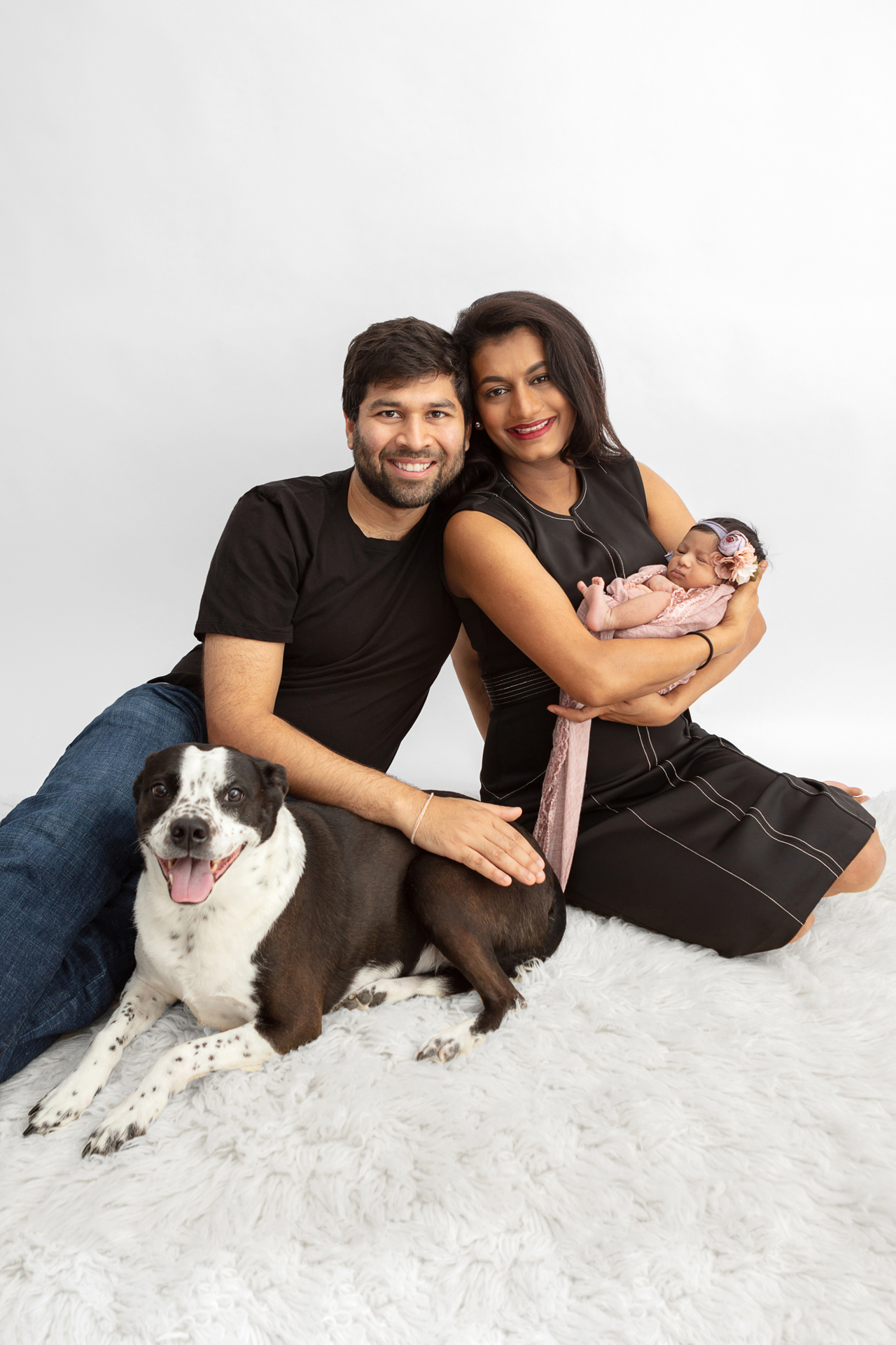 new family of four in a studio newborn family session including their Boston Terrier cattle dog mix