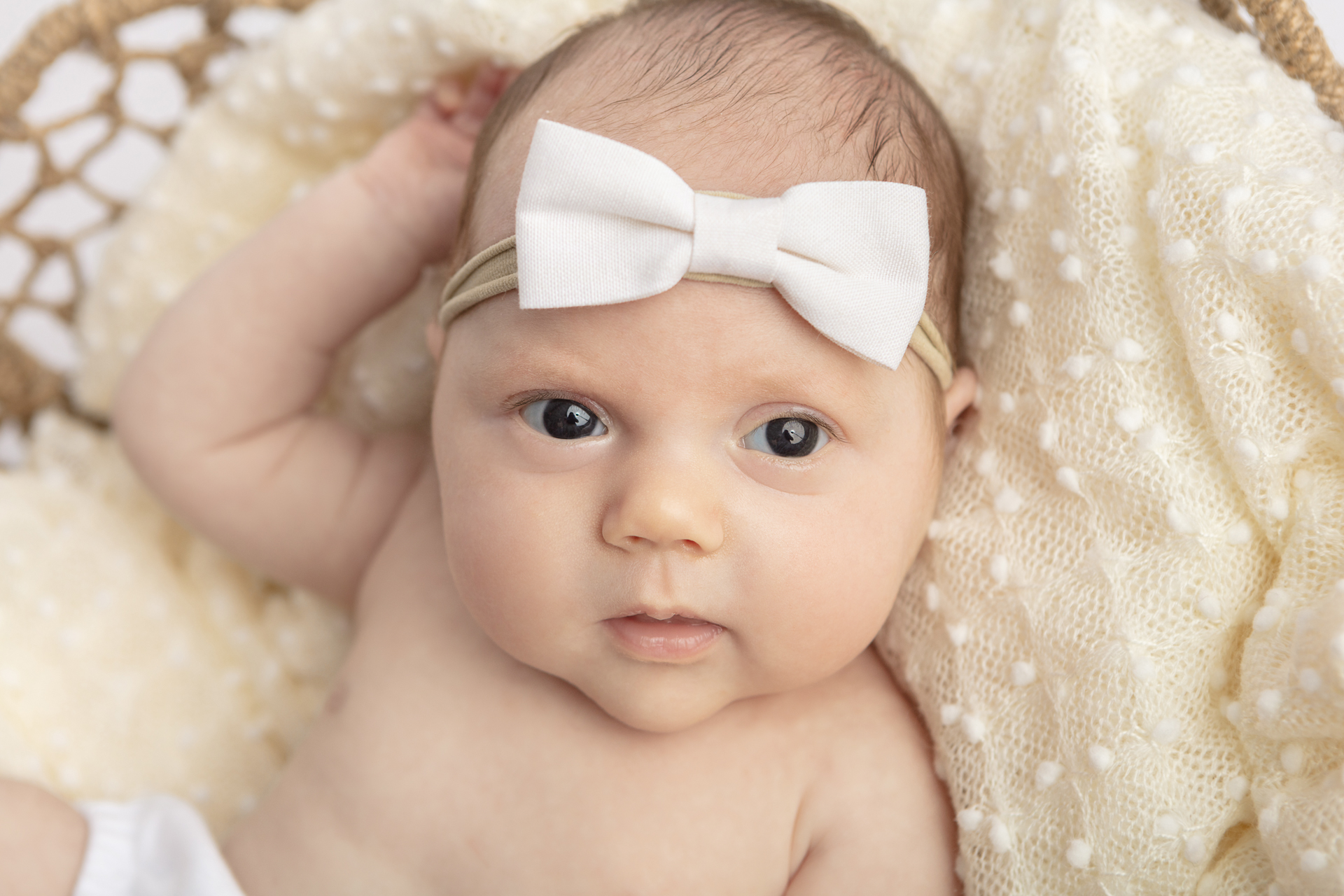 awake newborn baby girl with big brown eyes, wearing a stretch newborn headband with a white bow